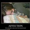 demotivational-affection