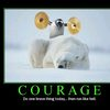 demotivational-courage
