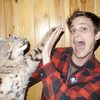 matthew-gray-gubler-cat-high-five