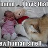 new-human-smell