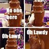 oh-lawdy-chocolate-fountain-parrot