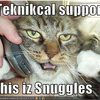 technical-support-cat-snuggles